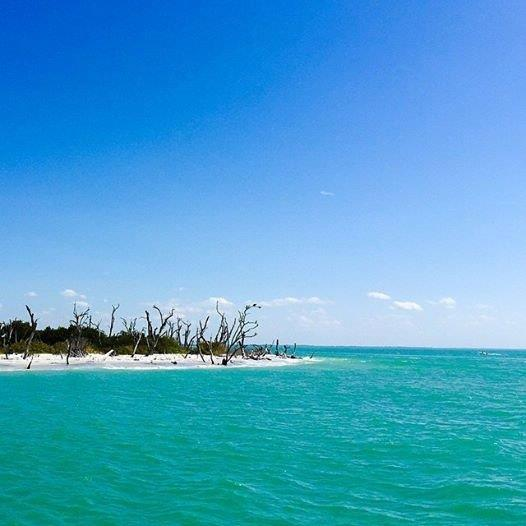Captiva Island: Captiva Island Real Estate